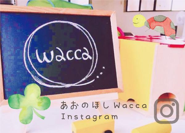 あおのほしwacca Instagram